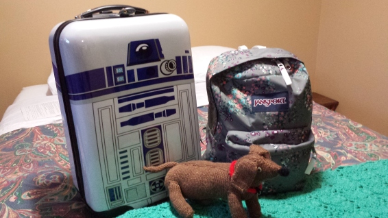 Don't you just love the R2D2 roller bag? I think that all aspects of travel should be fun - even the luggage.