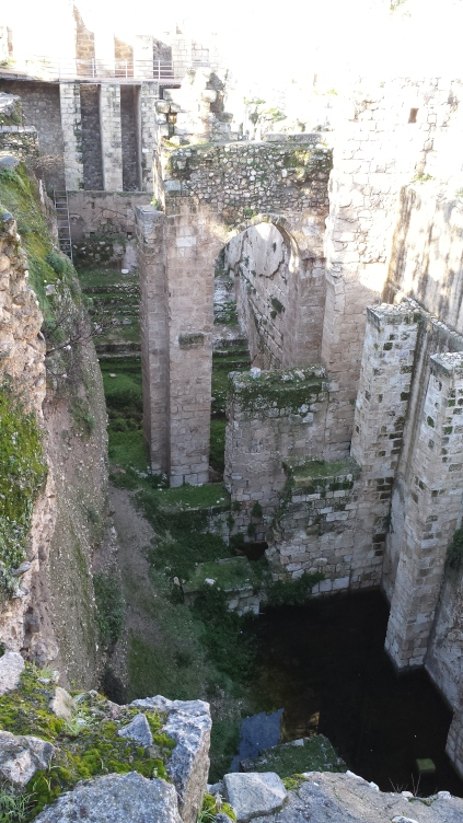 Ruins of the Healing Pools of Bethesda
