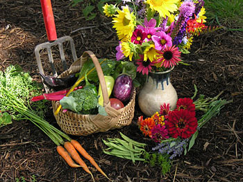 Organic Flowers and Vegetables